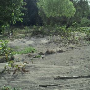 Nach dem Hochwasser an der Freiberger Mulde, ausgedehnte Kies- und Sandflächen.
