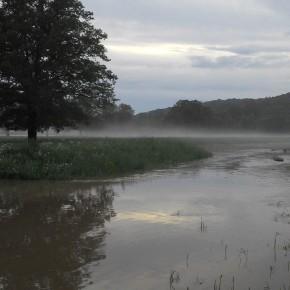 Nebelstimmung am Abend im Hochwasser an der Freiberger Mulde.
